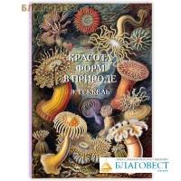Красота форм в природе. Э.Геккель. Великие полотна