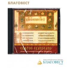 Диск (MP3) Святое Евангелие. Читает протоиерей Александр Шаргунов. Аудиокнига (9ч. 17мин)